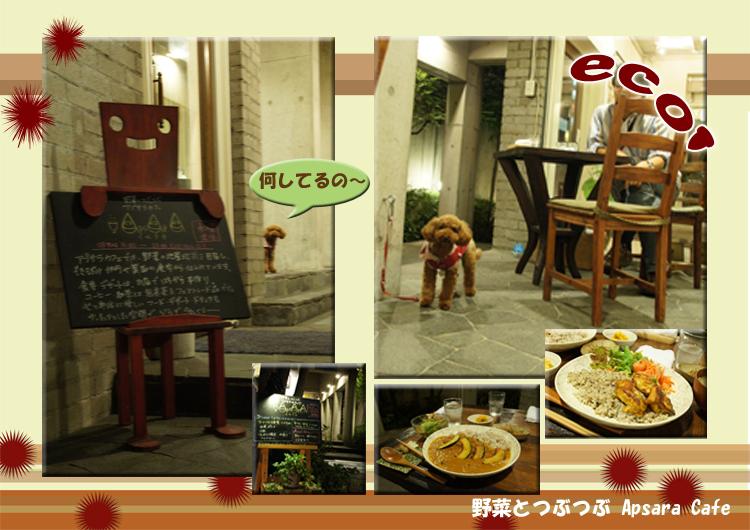 101016_dinner